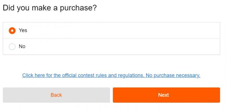Big Lots Survey with Receipt Image