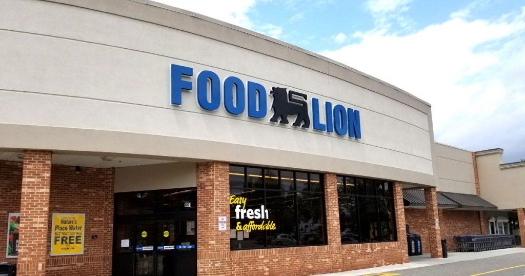 Food Lion Survey Image